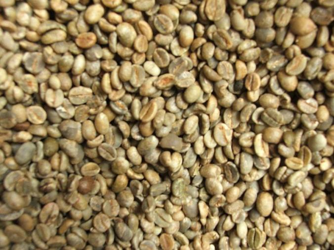Yemen Mocca Sanani green coffee