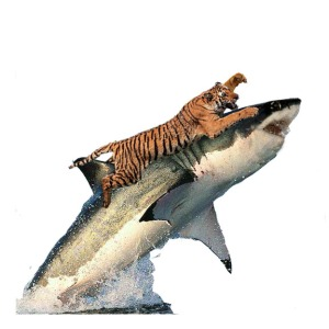 tigershart